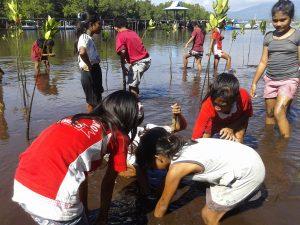 Anak-anak Pulau Kumo saat tanam Manggrove Bersama