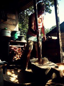 menumbuk padi di Pagu
