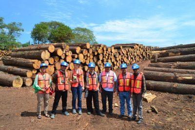 Industri Pengolahan Kayu Komunitas San Juan