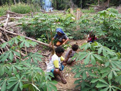 Anak-anak sepulang sekolah ikut mambantu berkebun bersikan rerumputan